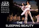 Please click Sleeping Beauty - Cardiff theatre package